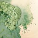 Pigmenten voor gietklei en glazuur per 10 gram.