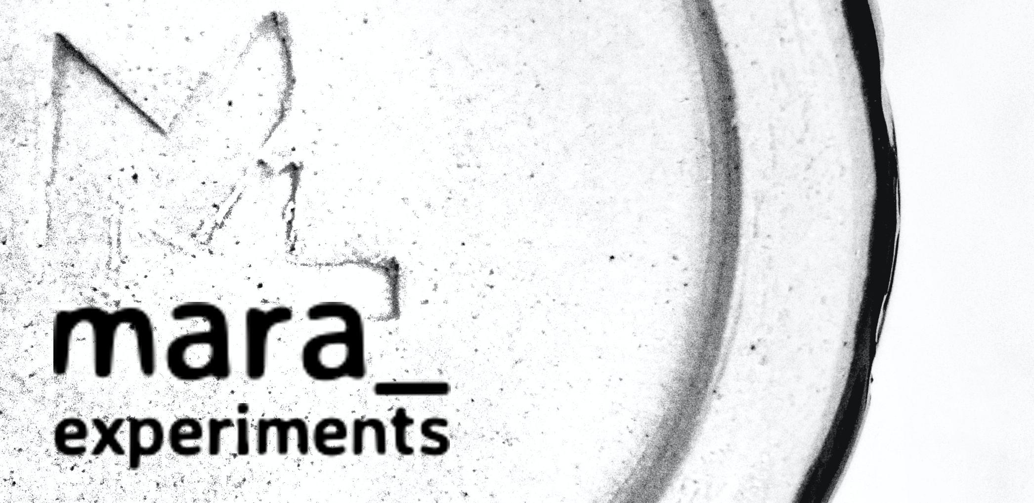 Mara Lammertzen | mara_experiments
